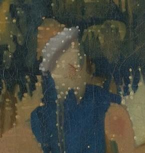 348-vermeerfromtheback